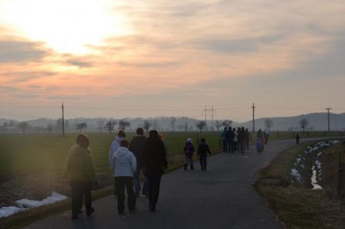Novoroční pochod 2013